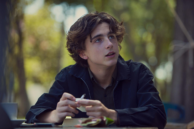 lady-bird-mit-timothee-chalamet